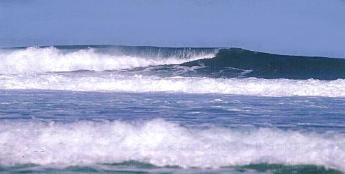 海の自然のなるほど 「波はどうしておきるの」